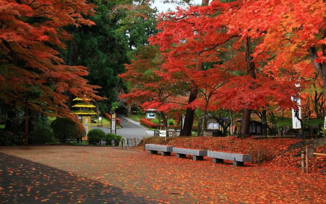 Hiraizumi - Temples, Gardens and Archaeological Sites Representing the Buddhist Pure Land